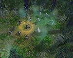 Darkforest2.jpg